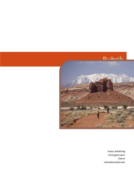 Affärsrapport (grafisk design)