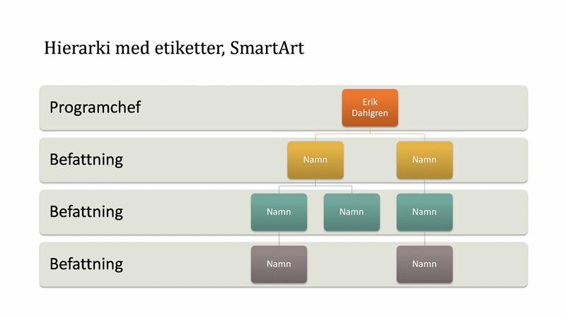 Organisationsschema med hierarki (bredbildsformat)