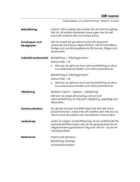 Meritförteckning, funktionell (minimalist)
