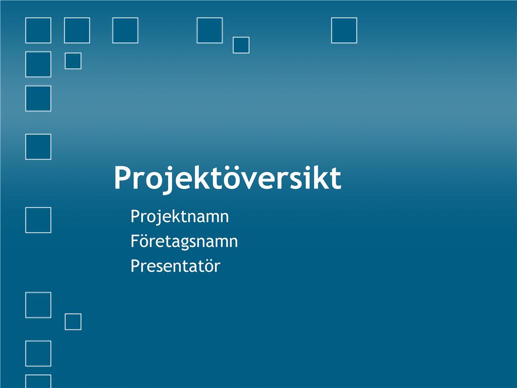 Presentation av projektöversikt