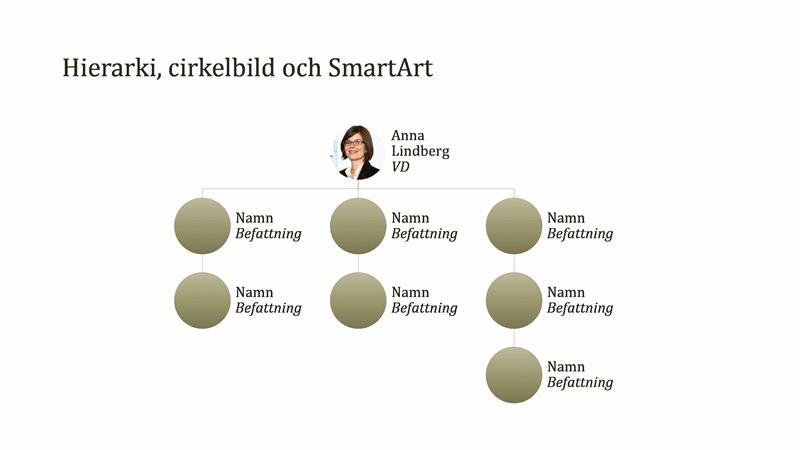 Organisationsschema, cirkelbild (bredbildsformat)