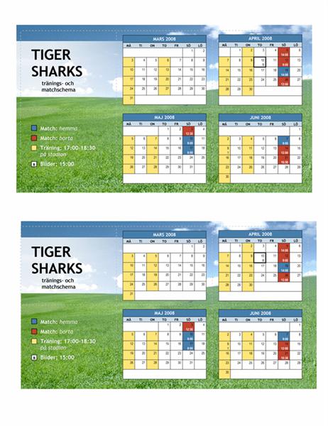 Fickkalender för 2008, ungdomsidrott (vårmånader)