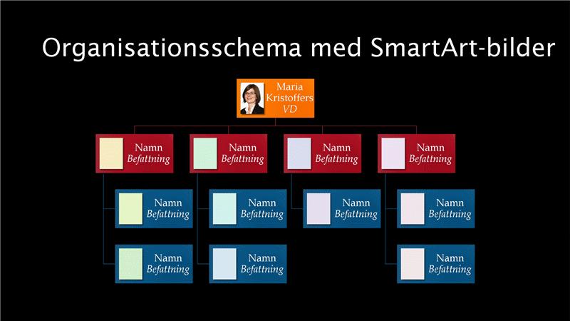 Organisationsschema med bilder (flerfärg på svart), bredbildsformat