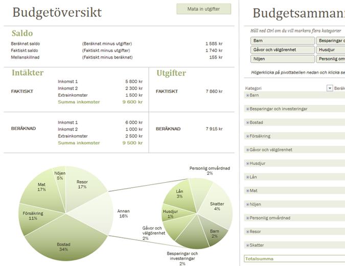 Familjebudget med diagram