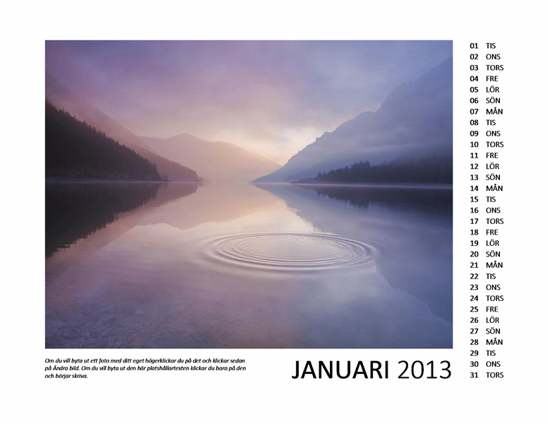 Tolv månaders fotokalender för 2013