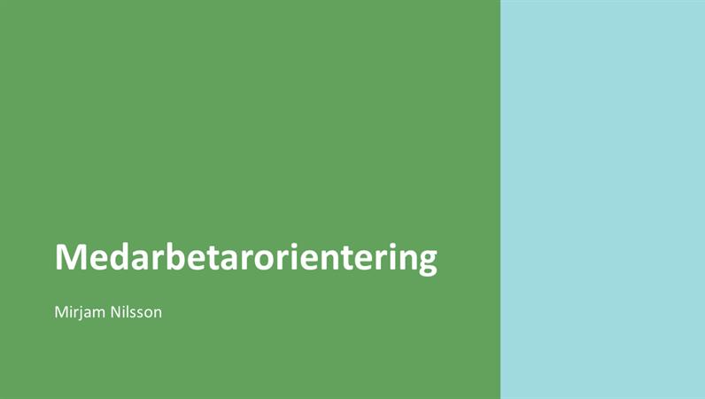 Orienteringspresentation för anställda