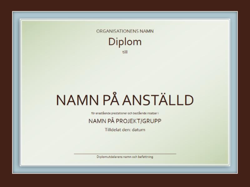 Diplom för särskild insats