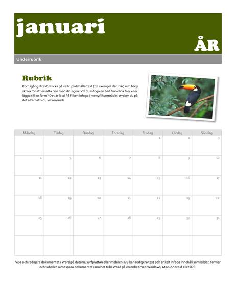 Kalender för ögonblicksbild