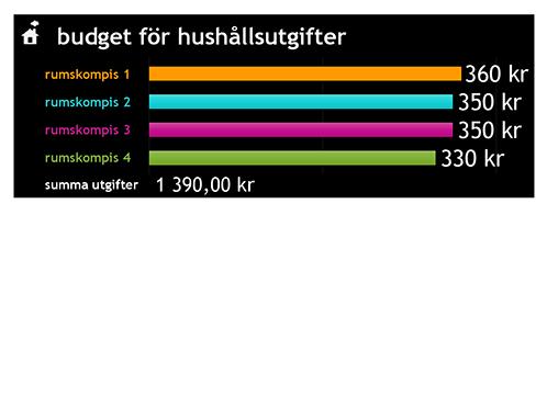 Utgiftsbudget för hushåll