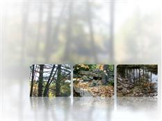 Bilder med reflektion och suddig bakgrund