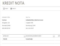 Anteckning om kredit/debet