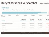 Budget/insamling för icke-vinstdrivande organisationer