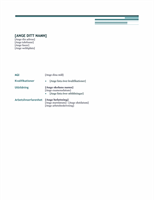 Meritförteckning (strikt)