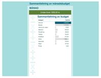 Månatlig budgetkalkylator