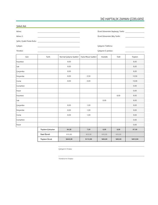 Hastalık ve tatil izinlerini gösteren iki haftalık zaman çizelgesi (örnek veriler içerir)