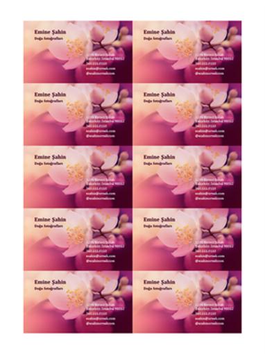 Kartvizitler (çiçek fotoğrafı)