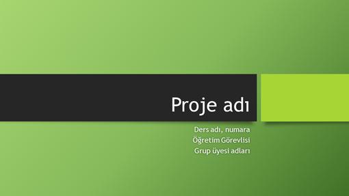 Grup projesi sunusu (Berlin temaları, geniş ekran)