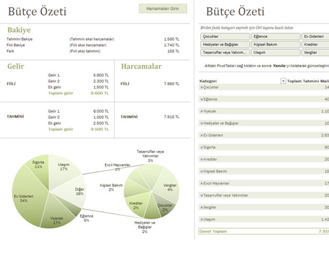 Grafiklerle aile bütçesi