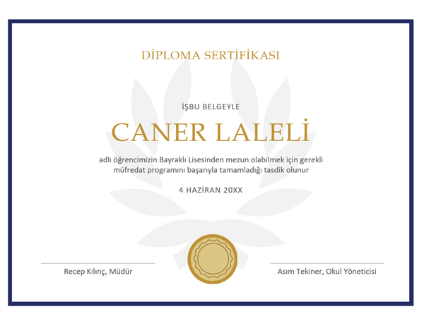 Diploma sertifikası