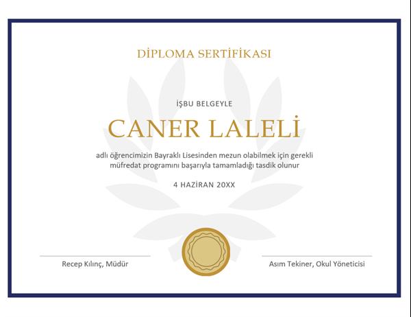Diploma sertifikası