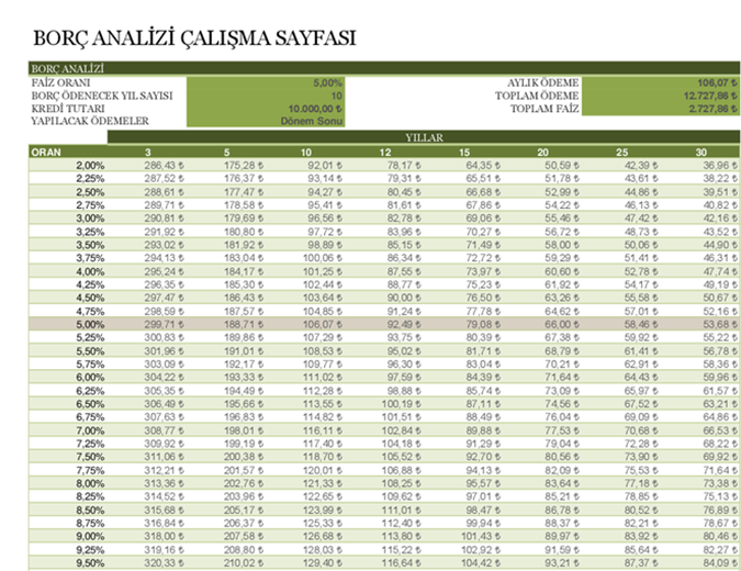 Borç analizi çalışma sayfası