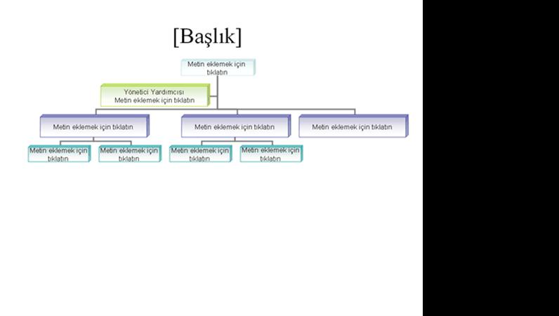 Kuruluş Grafiği