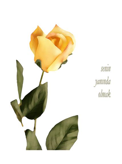 Romantik kart (gül desenli)