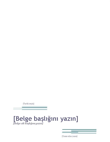 Rapor (Kentsel tasarımı)