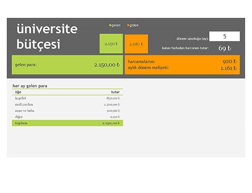 Üniversite bütçesi