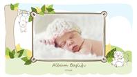 Bebek fotoğraf albümü (hayvan çizimleri, geniş ekran)