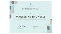 Bitirme sertifikası (mavi)
