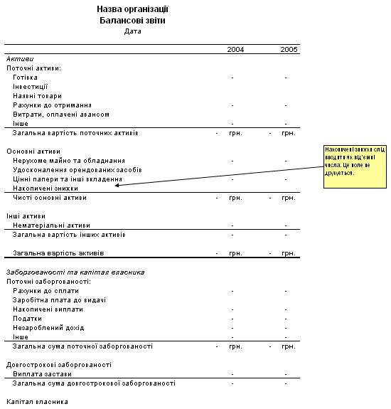 Дворічний балансовий звіт з інструкціями