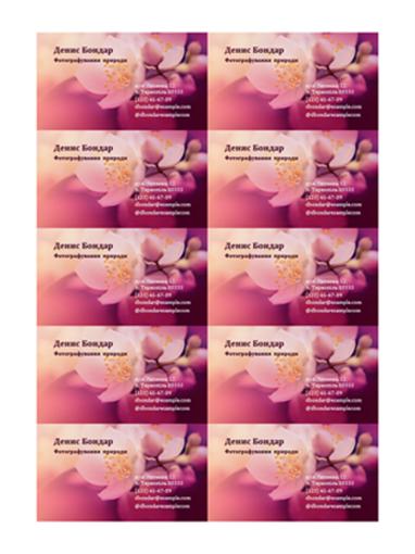 Візитки (фотографія квітки)