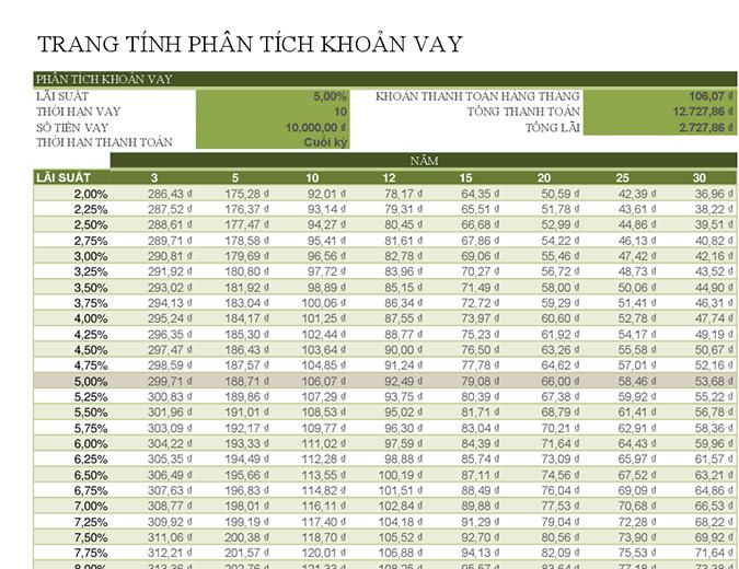 Trang tính phân tích khoản vay