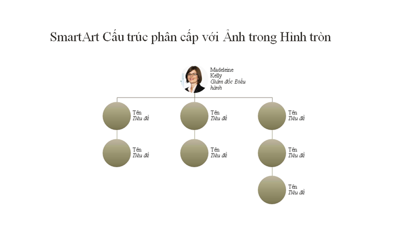 Biểu đồ tổ chức ảnh hình tròn (màn hình rộng)