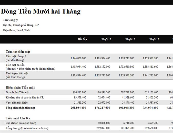 Báo cáo dòng tiền 12 tháng