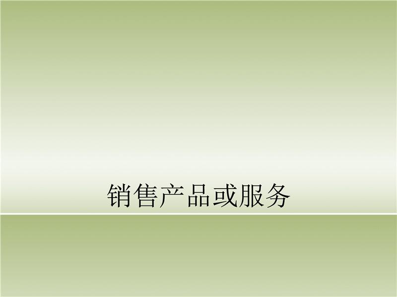 产品或服务演示文稿