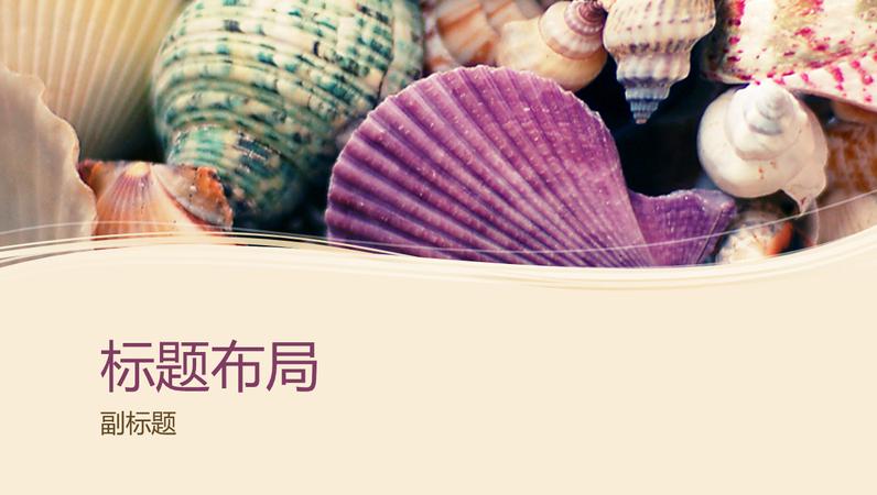 五颜六色的各种贝壳