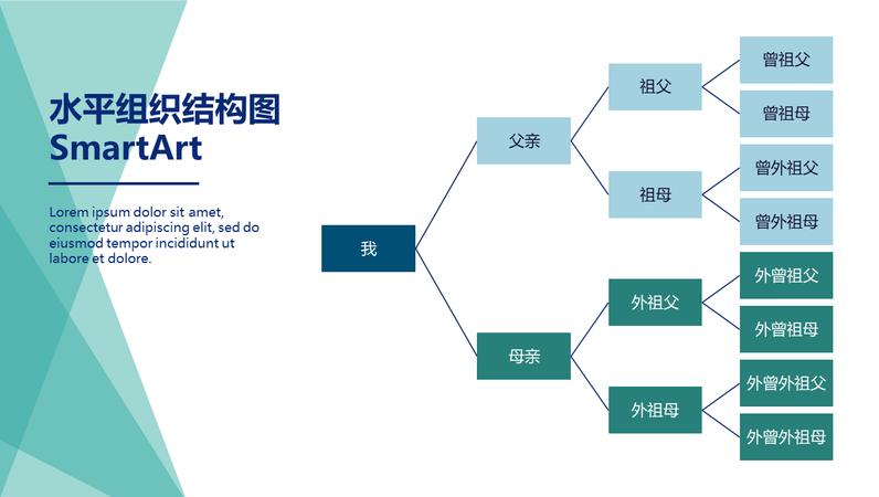 家庭树图表(水平、绿色、白色、宽屏)
