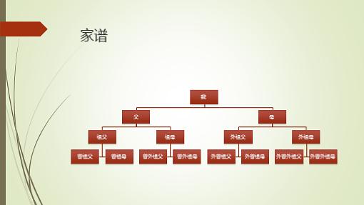 家谱图(垂直、绿色、红色、宽屏)