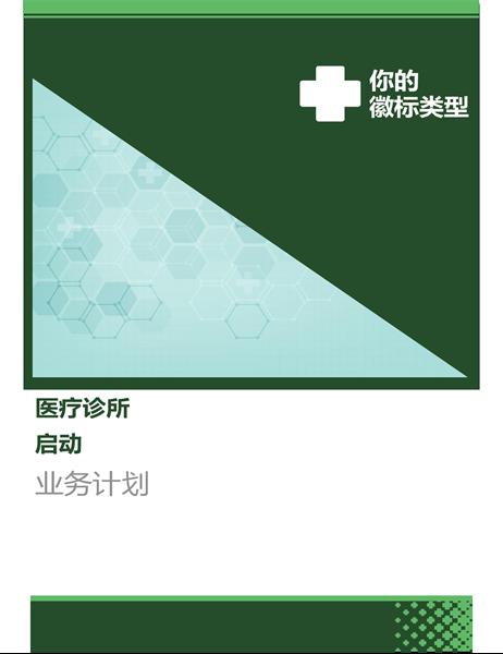 医疗保健商务计划