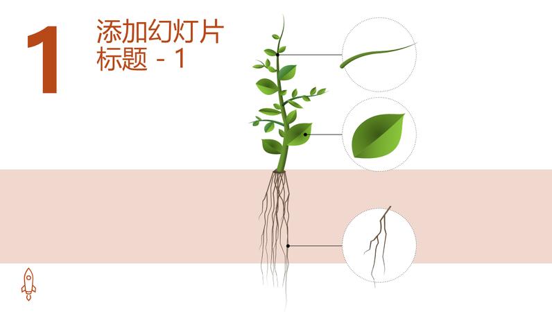动态树生长图形
