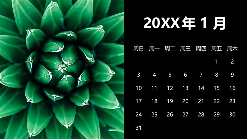 多肉植物月历