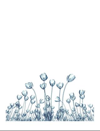 花卉贺卡(10 张,每页 1 张)