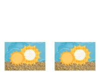 请柬(阳光沙滩图案)