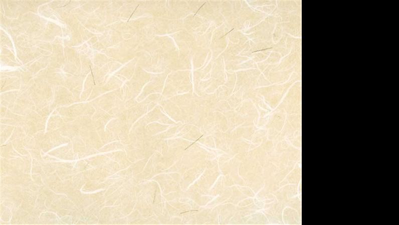米紙 2 設計範本