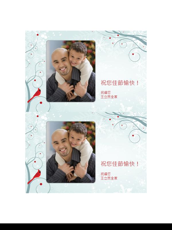 雪花假日相片卡片 (每頁兩張)