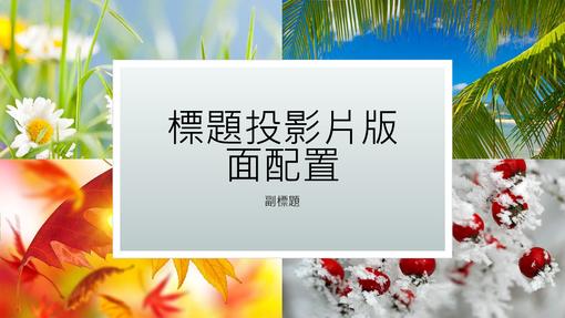 四季自然簡報 (寬螢幕)